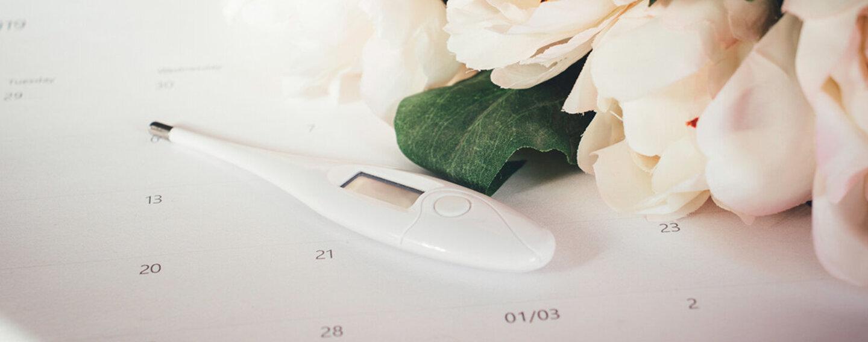 Kalenderblatt, Thermometer und Blumen