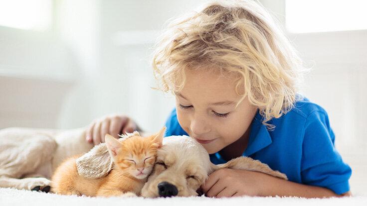Ein Kleinkind spielt mit einem Welpen und einem Katzenbaby.