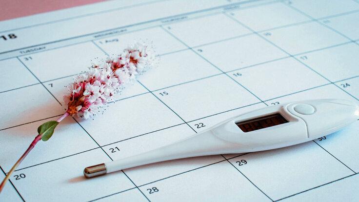 Auf einem Zykluskalender liegt eine Blüte und ein Thermometer für natürliche Verhütung.