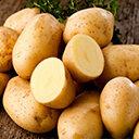 Ungeschälte und halbierte Kartoffel auf Holztisch
