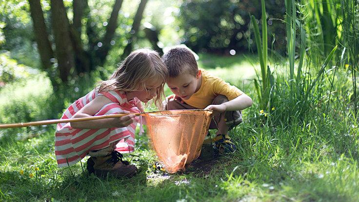 Zwei kleine Kinder spielen mit einem Kescher im Wald, weil sie miteinander befreundet sind.