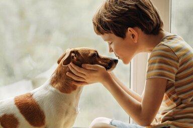 Ein Haustier kann auch für die emotionale Entwicklung von Kindern wertvoll sein.