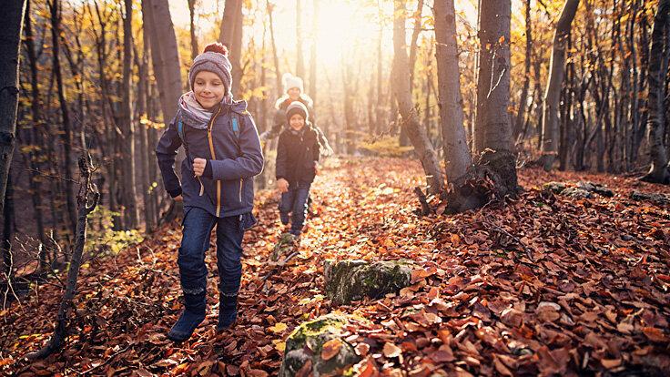 Drei Kinder laufen durch einen Herbstwald.